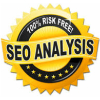 FREE ONLINE SEO ANALYSIS